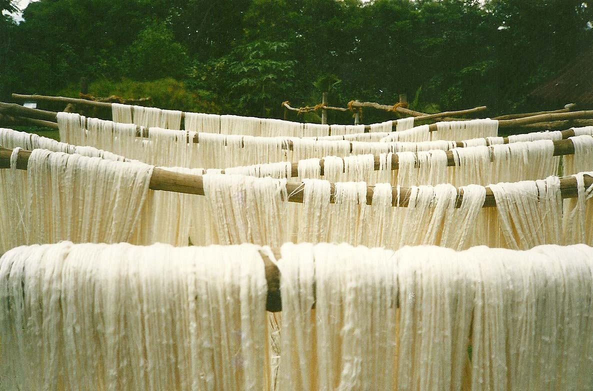 Questions To Ask Sustainable Fabric Suppliers Ethical Fashion Ny